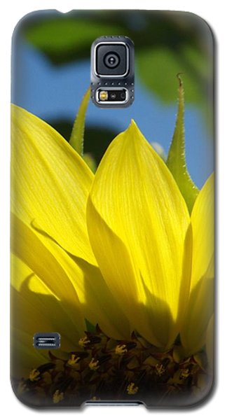 Galaxy S5 Case featuring the photograph Arinniti by Elizabeth Sullivan
