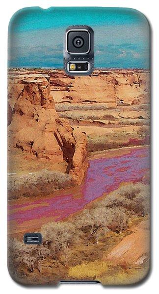 Arizona 2 Galaxy S5 Case