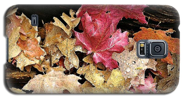 Arizona Fall Colors Galaxy S5 Case