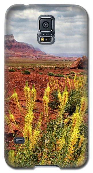 Arizona Landscape Galaxy S5 Case
