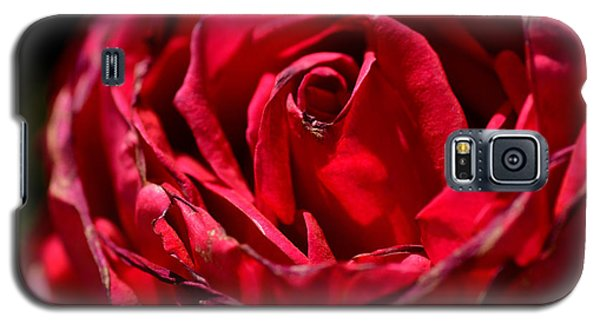 Arizona Rose I Galaxy S5 Case