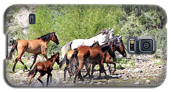 Arizona Wild Horse Family Galaxy S5 Case