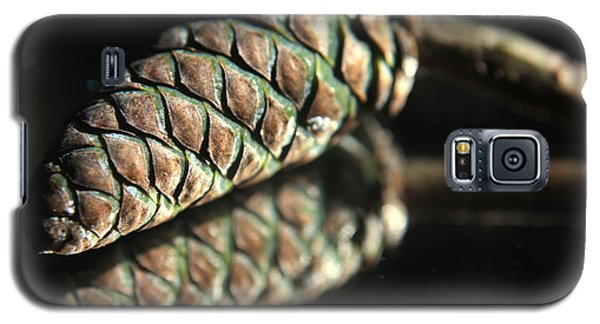 Armored Pine Cone Galaxy S5 Case