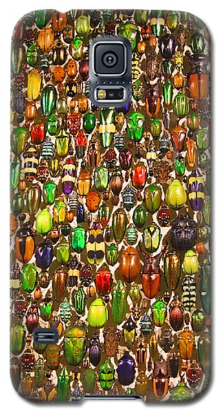 Army Of Beetles And Bugs Galaxy S5 Case by Brooke T Ryan