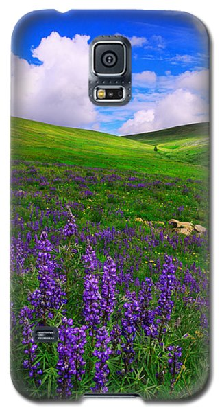Galaxy S5 Case featuring the photograph Aroma Of Summer by Kadek Susanto