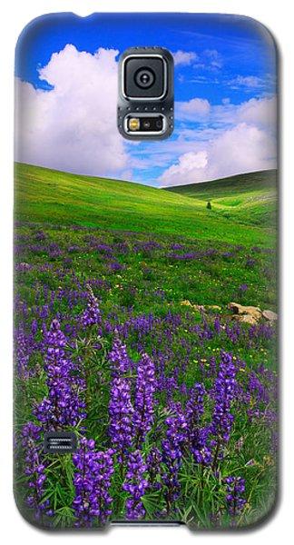 Aroma Of Summer Galaxy S5 Case