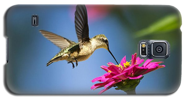 Art Of Hummingbird Flight Galaxy S5 Case