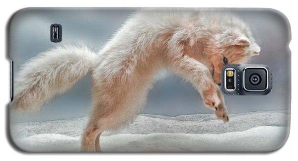 Artic White Wolf Galaxy S5 Case