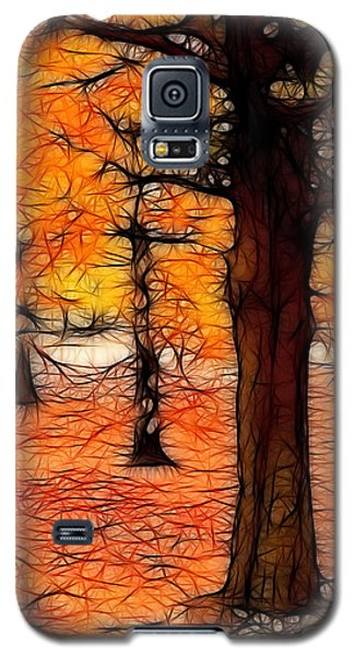 Artistic Fall Trees Galaxy S5 Case