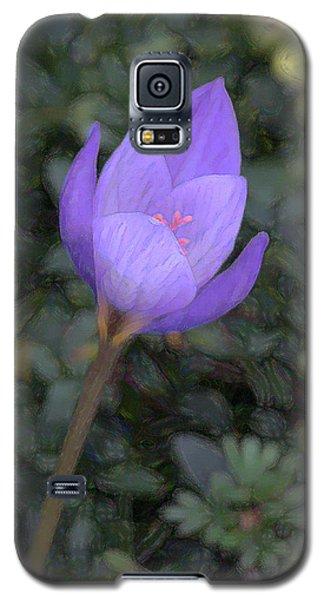 Galaxy S5 Case featuring the photograph Purple Flower by John Freidenberg