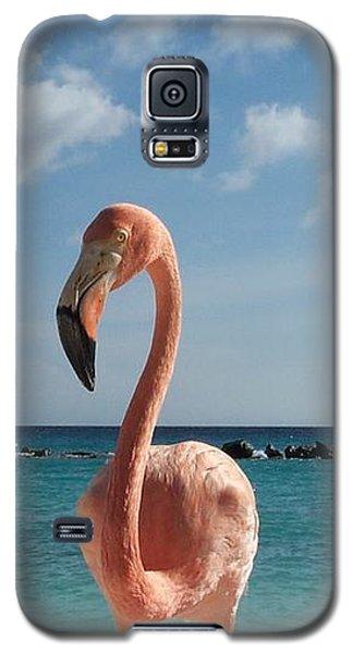 Aruba Hairy Eyeball Galaxy S5 Case