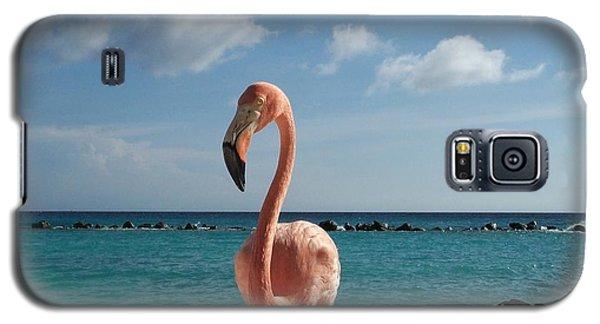 Galaxy S5 Case featuring the photograph Aruba Hairy Eyeball by HEVi FineArt