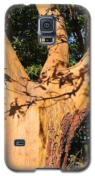 Arbutus - Shadows From Above Galaxy S5 Case