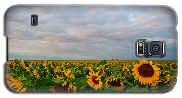 Galaxy S5 Case featuring the photograph As Far As The Eye Can See by Ronda Kimbrow