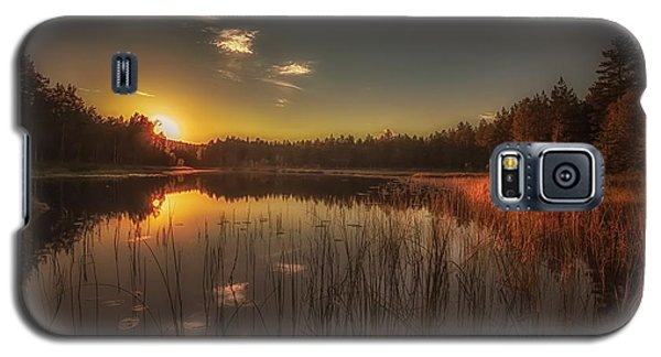 As In A Dream Galaxy S5 Case by Rose-Maries Pictures