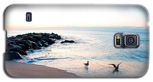 Asbury Seagulls Galaxy S5 Case