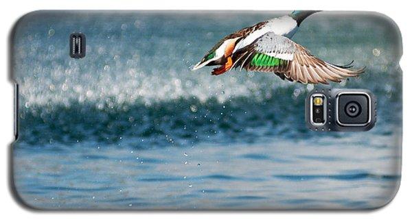 Ascent Galaxy S5 Case