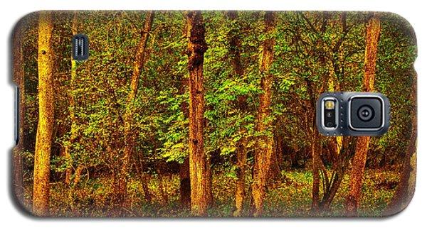 Ash Trees Galaxy S5 Case