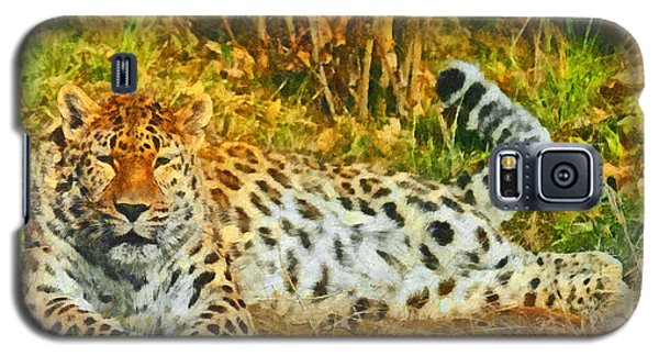 Asian Snow Leopard Galaxy S5 Case