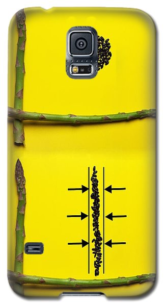 Galaxy S5 Case featuring the photograph Asparagus And Black Rice Depicting Heisenberg Uncertainty Food Physics by Paul Ge