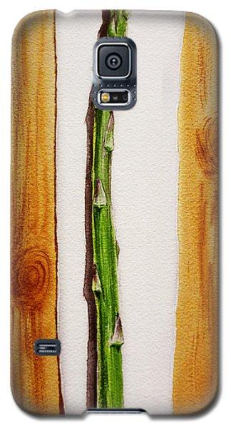 Asparagus Tasty Botanical Study Galaxy S5 Case by Irina Sztukowski