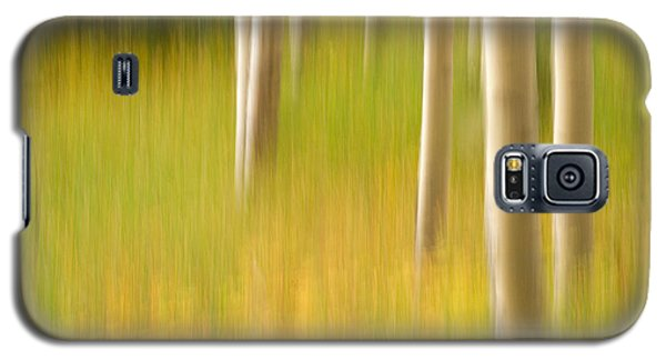 Aspen Abstract Galaxy S5 Case