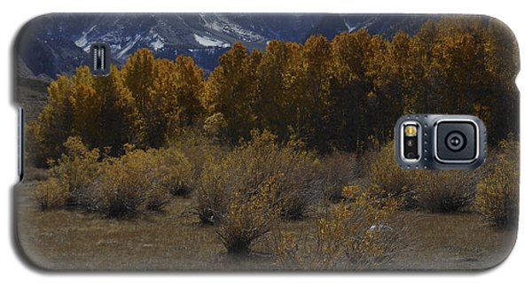 Aspen And Snow Capped Mountain Galaxy S5 Case