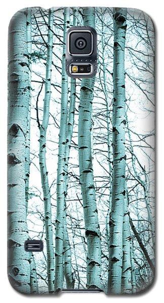 Aspen Blues Galaxy S5 Case