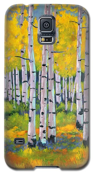 Aspen Color Galaxy S5 Case