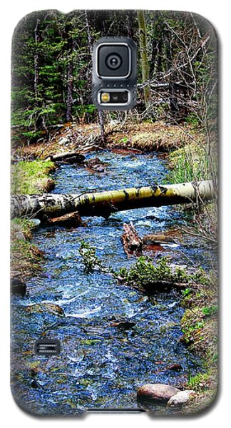 Galaxy S5 Case featuring the photograph Aspen Crossing Mountain Stream by Barbara Chichester