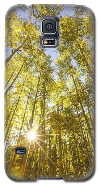 Aspen Day Dreams Galaxy S5 Case