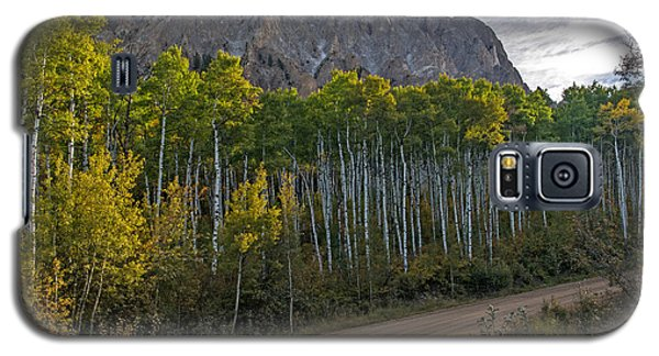 Aspen Forest Along A Colorado Unpaved Road Galaxy S5 Case
