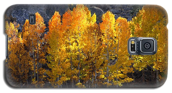 Galaxy S5 Case featuring the photograph Aspen Gold by Lynn Bauer