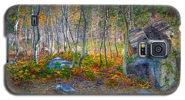 Galaxy S5 Case featuring the photograph Aspen Grove by Jim Thompson
