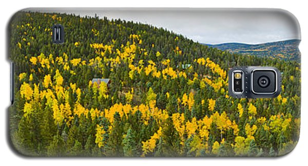Sangre De Cristo Galaxy S5 Case - Aspen Hillside In Autumn, Sangre De by Panoramic Images