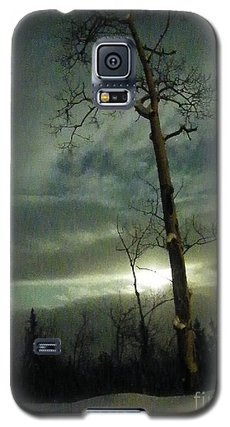Aspen In Moonlight Galaxy S5 Case