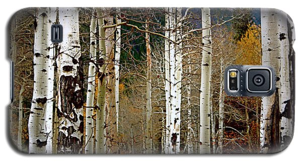 Galaxy S5 Case featuring the photograph Aspen In The Rockies by Lynn Sprowl