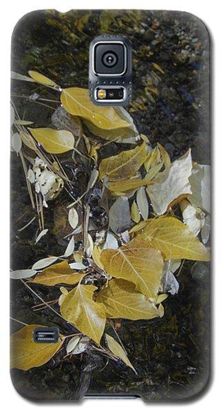 Aspen Leaves In Glass Creek Whirlpool Galaxy S5 Case