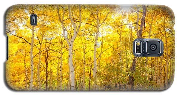 Aspen Morning Galaxy S5 Case