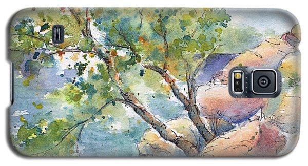 Aspen On The Rocks Galaxy S5 Case by Pat Katz