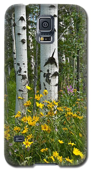 Aspen Trees And Wildflowers Galaxy S5 Case by Jeff Goulden