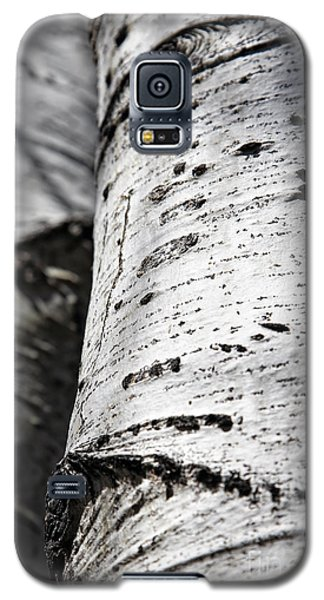 Galaxy S5 Case featuring the photograph Aspen Trunks In Light And Shadow by Lincoln Rogers