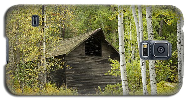 Aspens And Barn Galaxy S5 Case