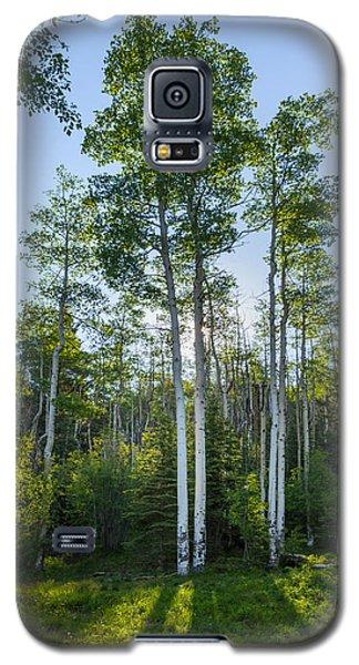 Aspens At Sunrise 1 - Santa Fe New Mexico Galaxy S5 Case