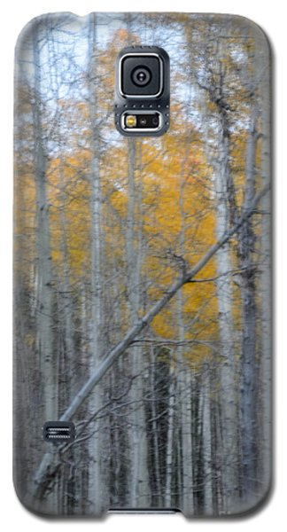 Aspens II Galaxy S5 Case
