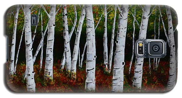 Aspens In Fall 2 Galaxy S5 Case by Melvin Turner