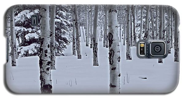 Galaxy S5 Case featuring the photograph Aspens In The Snow by Kristal Kraft