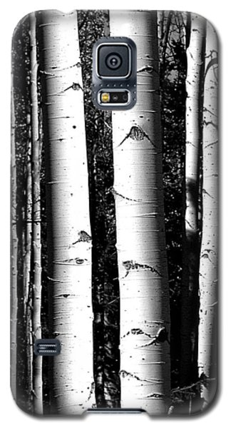 Aspens Galaxy S5 Case