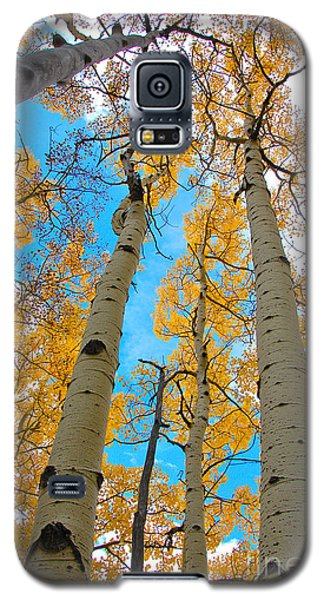 Aspens Galaxy S5 Case