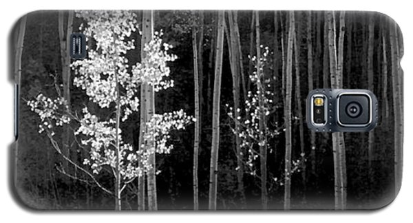 Aspens Northern New Mexico Galaxy S5 Case by Ansel Adams